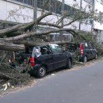 motability car insurance